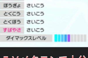 剣 盾 メタモン 6v